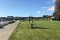 Tree-planting-5-Web